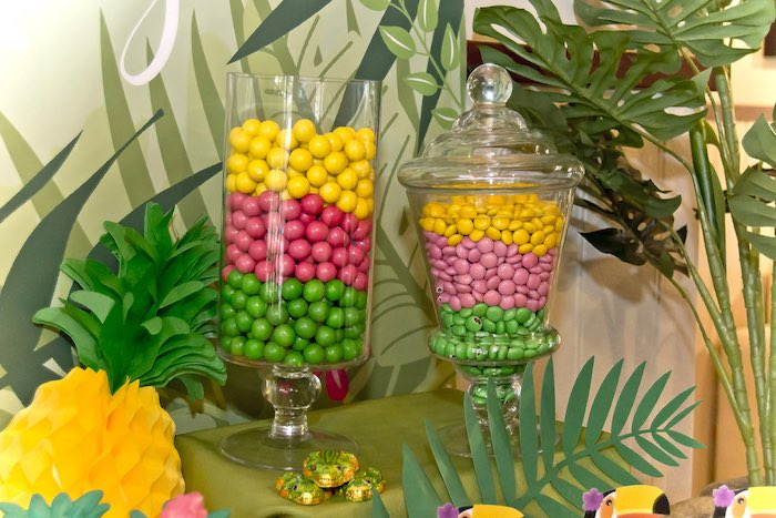Candy jars from a Tropical Toucan Birthday Party on Kara's Party Ideas | KarasPartyIdeas.com (14)