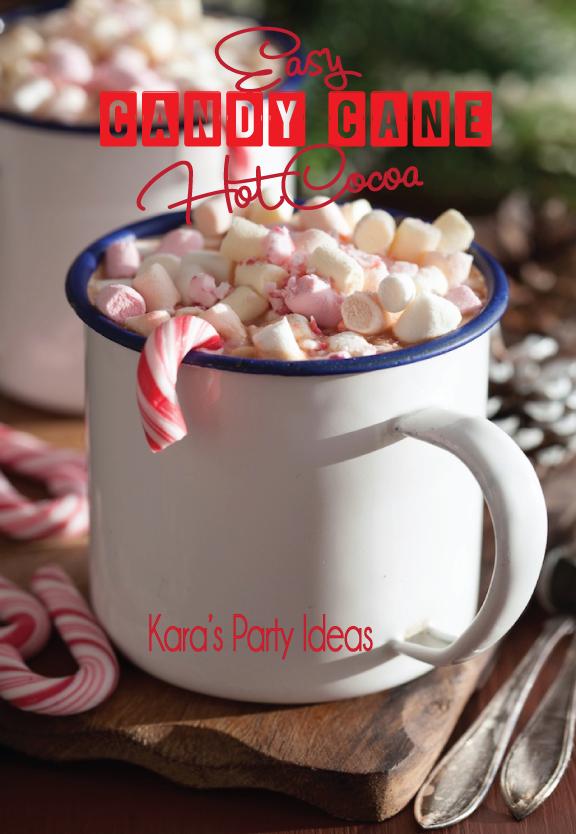 Easy Peppermint Hot Chocolate Recipe | Hot Chocolate Recipe | Hot Chocolate Party | Kara's Party Ideas #hotchocolaterecipe #pepperminthotchocolate #hotcocoarecipe #winterrecipe