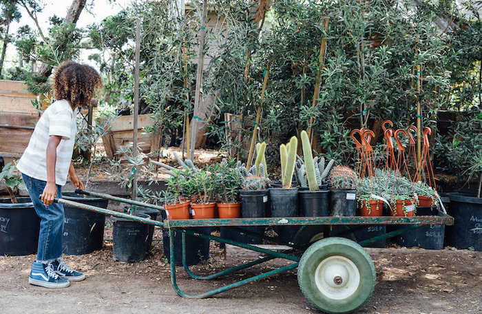 Plant wheelbarrow from a Fall Planting Party on Kara's Party Ideas | KarasPartyIdeas.com (40)