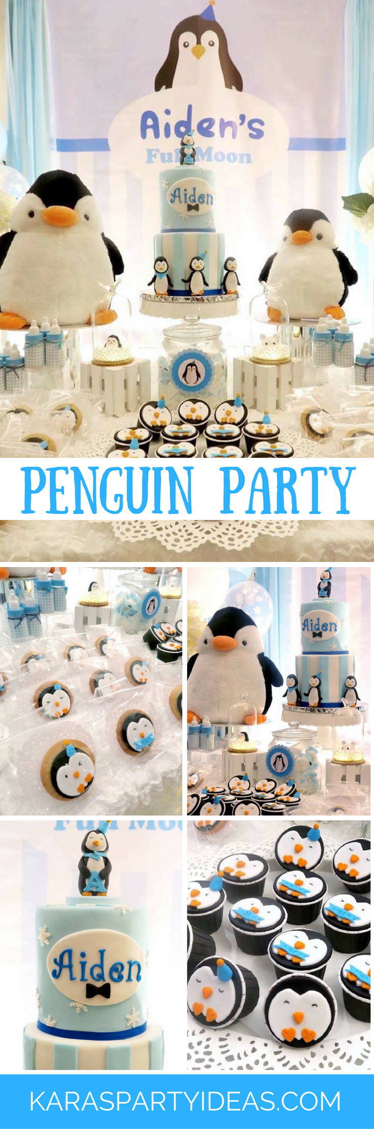 Penguins Party via Kara's Party Ideas - KarasPartyIdeas.com