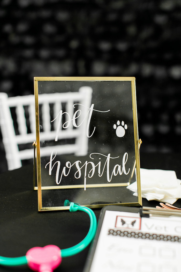 Pet Hospital Sign from a Pet Adoption Birthday Party on Kara's Party Ideas | KarasPartyIdeas.com (20)