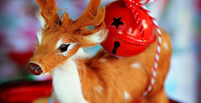 Bright & Colorful Christmas Party on Kara's Party Ideas | KarasPartyIdeas.com (2)