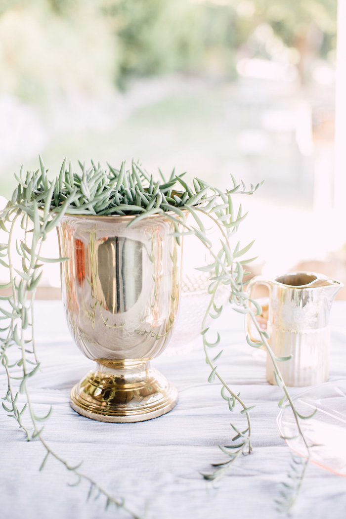 Plant centerpiece from a Coastal Vintage Romance Bridal Shower on Kara's Party Ideas | KarasPartyIdeas.com (4)