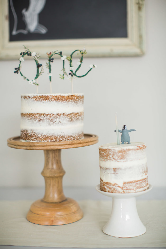 Semi-naked cakes from an Arctic One-derland Birthday Party on Kara's Party Ideas | KarasPartyIdeas.com (6)