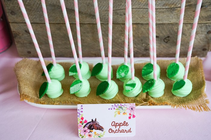 Apple Orchard Cake Pops from a Girly Horse Birthday Party on Kara's Party Ideas | KarasPartyIdeas.com (6)