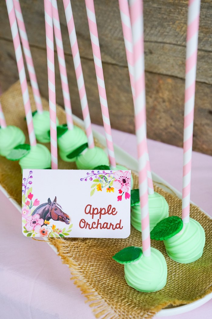 Apple Orchard Cake Pops from a Girly Horse Birthday Party on Kara's Party Ideas | KarasPartyIdeas.com (16)