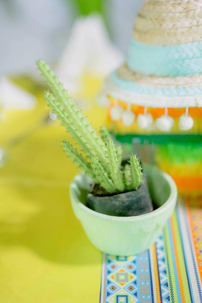 Cactus centerpiece from a Mexican Birthday Fiesta on Kara's Party Ideas | KarasPartyIdeas.com (19)