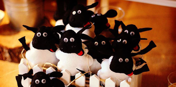 Sheep On The Loose Western Farm Birthday Party on Kara's Party Ideas | KarasPartyIdeas.com (3)