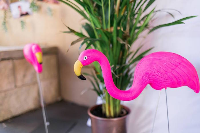 "Flamings from a ""Let's Flamingle"" Tropical Flamingo Birthday Party on Kara's Party Ideas 