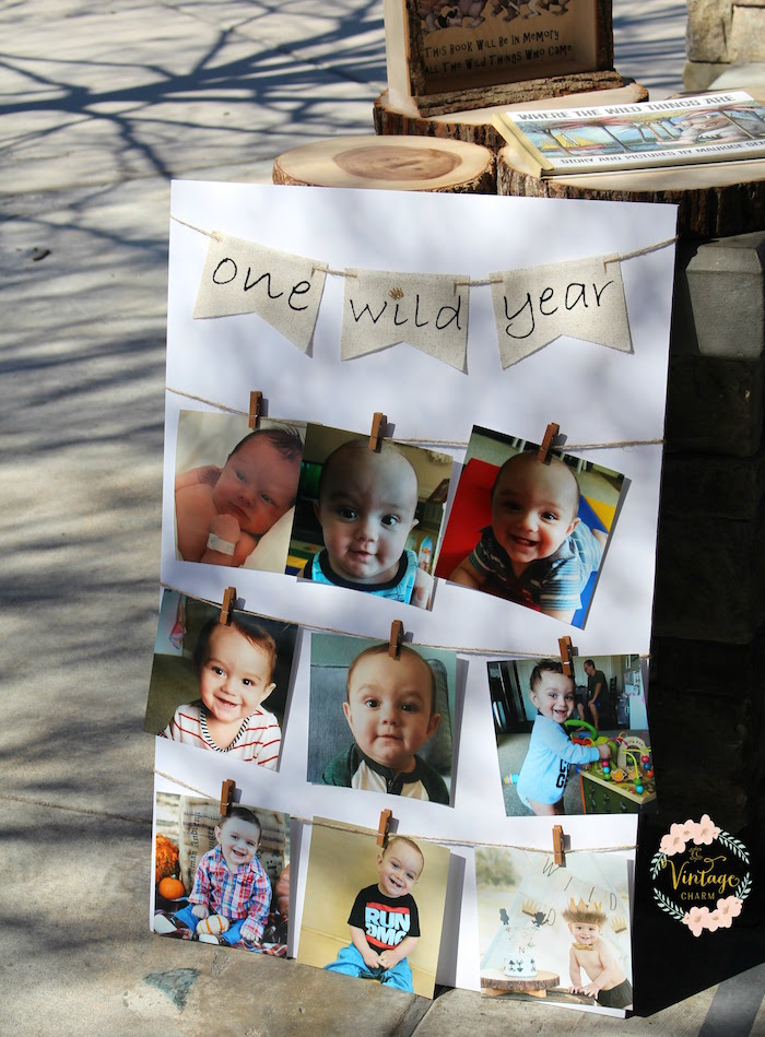 "One Wild Year Photo Board from a ""Where the Wild Things Are"" Birthday Party on Kara's Party Ideas 