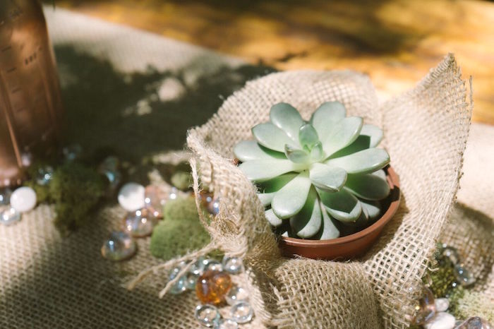 Succulent centerpiece from a Coachella Inspired Boho Birthday Party on Kara's Party Ideas | KarasPartyIdeas.com (15)