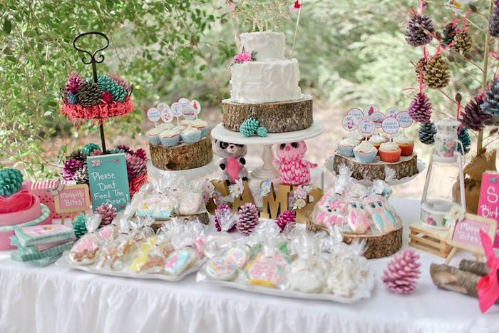 Dessert Table from a Girly Woodland Glamping Party on Kara's Party Ideas | KarasPartyIdeas.com (22)