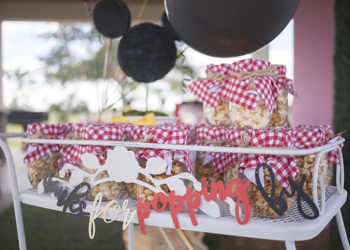 Mickey Mouse Picnic Party on Kara's Party Ideas | KarasPartyIdeas.com (15)