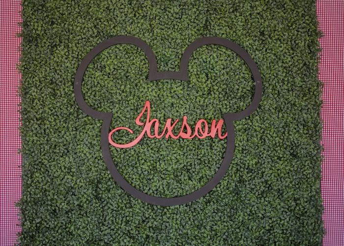 Mickey Mouse Picnic Party on Kara's Party Ideas | KarasPartyIdeas.com (14)