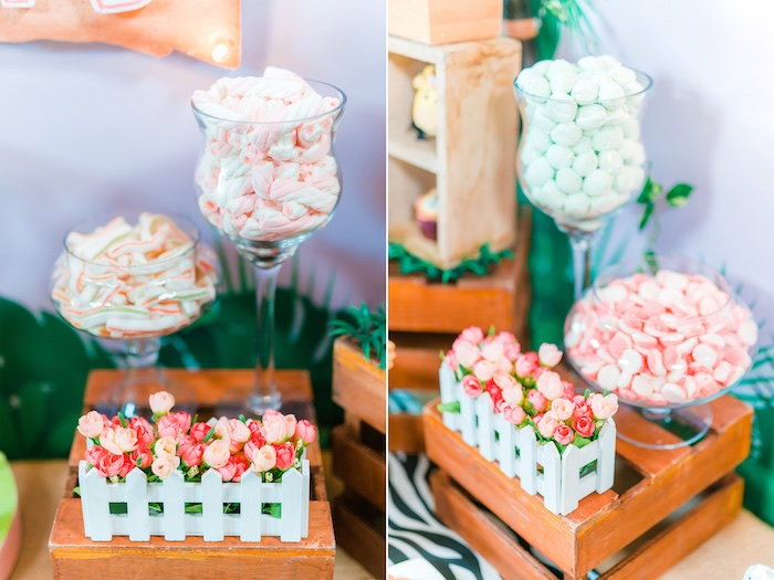 Candy Buffet from a Minnie Mouse Safari Birthday Party on Kara's Party Ideas | KarasPartyIdeas.com (20)
