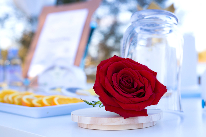 Red Rose from a The Little Prince Birthday Party on Kara's Party Ideas | KarasPartyIdeas.com (8)