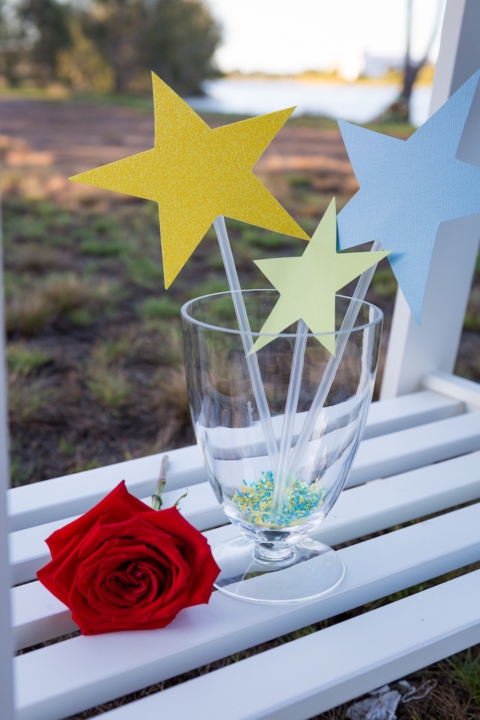 Stars and Rose from The Little Prince Birthday Party on Kara's Party Ideas | KarasPartyIdeas.com (7)