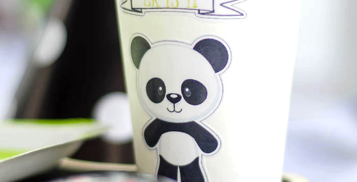 """Party Like a Panda"" Birthday Party on Kara's Party Ideas 