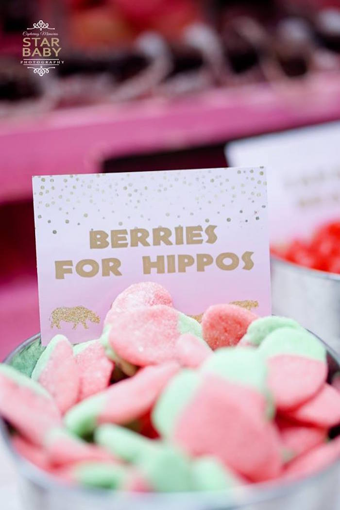 Berries For Hippos from a Girly Safari Party on Kara's Party Ideas | KarasPartyIdeas.com (14)