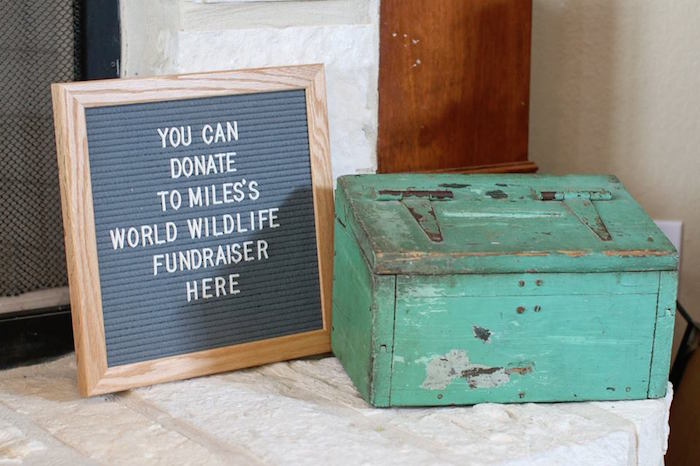 Letter Board + Donation Box from a Jungle Animal Birthday Party on Kara's Party Ideas | KarasPartyIdeas.com (21)