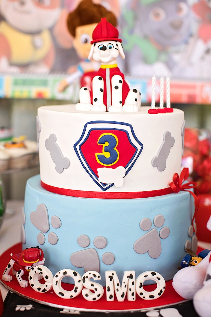 Paw Patrol Cake from a Paw Patrol Inspired Puppy Party on Kara's Party Ideas | KarasPartyIdeas.com (20)