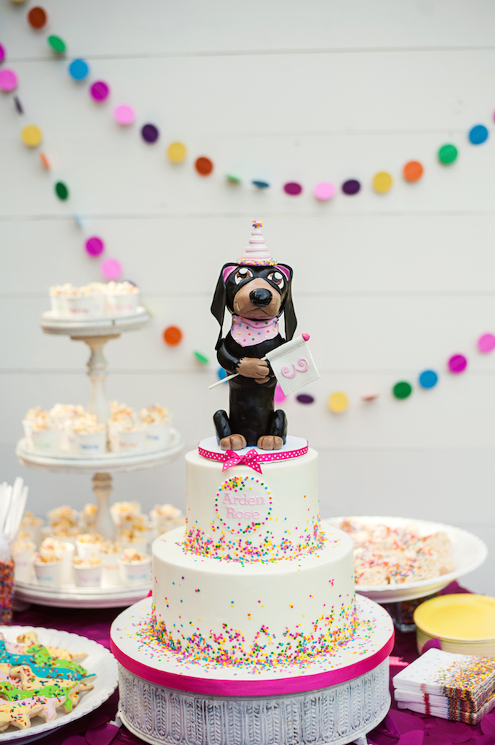 Puppy Themed Birthday Cake from a Puppies and Sprinkles Birthday Party on Kara's Party Ideas | KarasPartyIdeas.com (15)