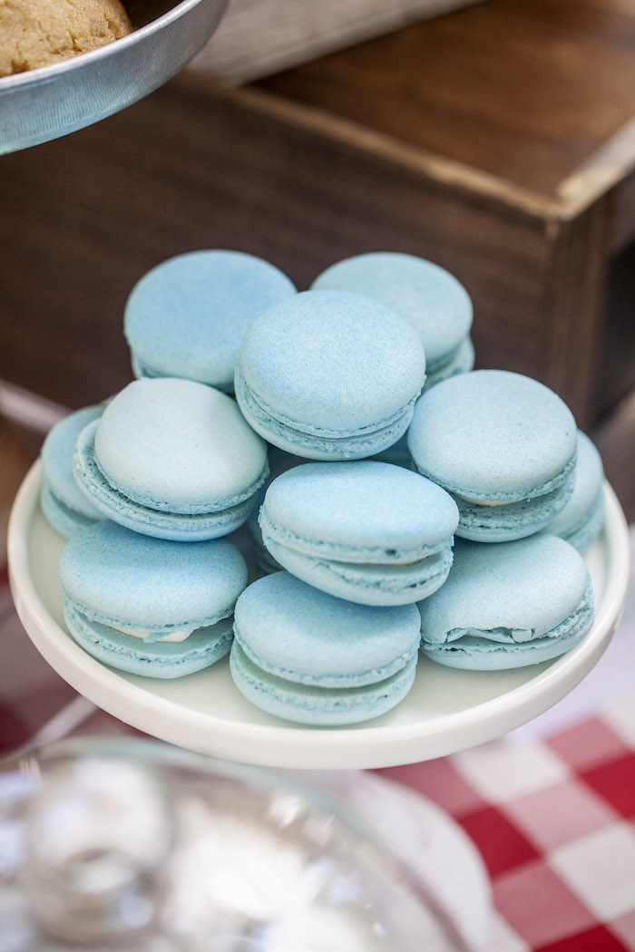 Macarons from a Rustic County Fair Birthday Party on Kara's Party Ideas | KarasPartyIdeas.com (19)