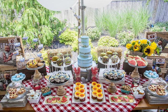 Fair Themed Dessert Table from a Rustic County Fair Birthday Party on Kara's Party Ideas | KarasPartyIdeas.com (9)