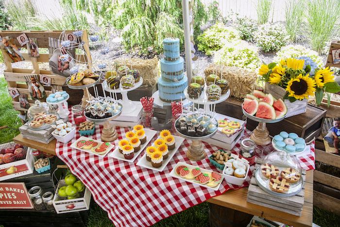 Fair Themed Dessert Table from a Rustic County Fair Birthday Party on Kara's Party Ideas | KarasPartyIdeas.com (8)