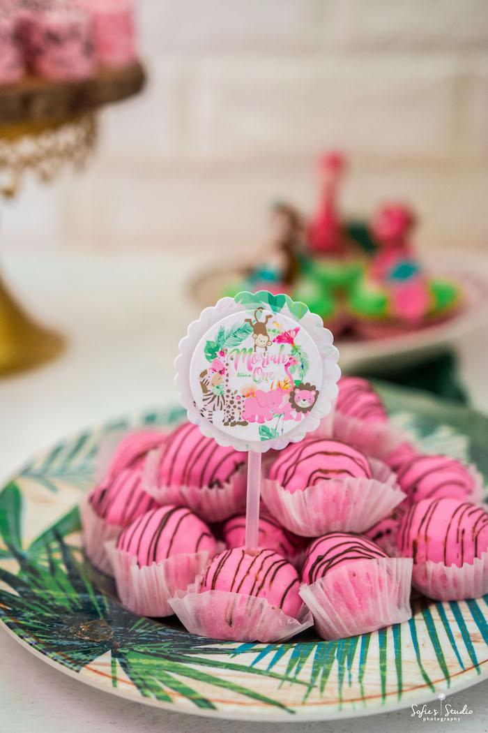 Pink Cake Pops from a Tropical Safari Birthday Party on Kara's Party Ideas | KarasPartyIdeas.com (30)