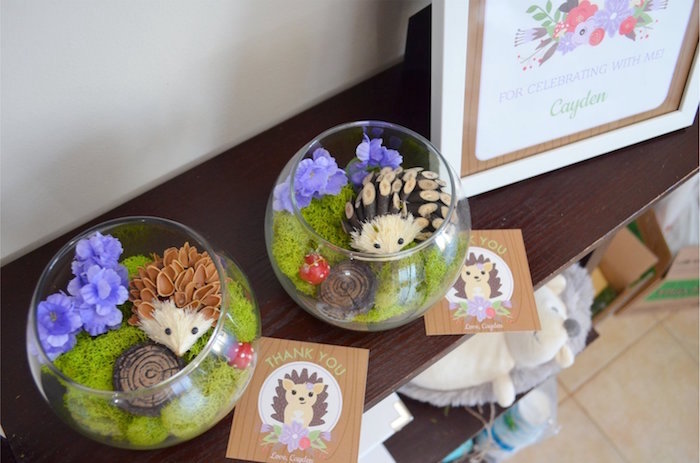 Hedgehog Terrariums from a Woodland Hedgehog Birthday Party on Kara's Party Ideas | KarasPartyIdeas.com (13)