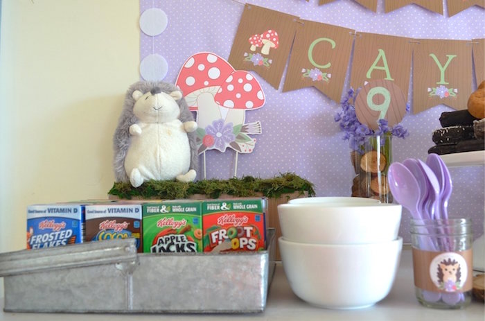 Personal Cereal Boxes from a Woodland Hedgehog Birthday Party on Kara's Party Ideas | KarasPartyIdeas.com (6)