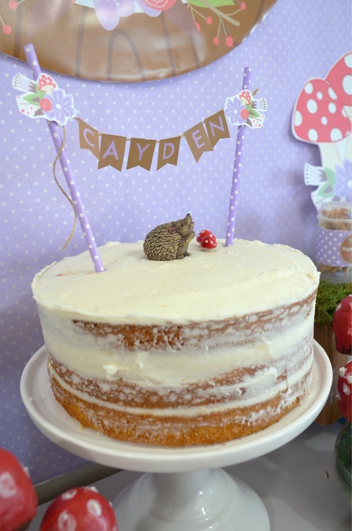 Hedgehog Cake from a Woodland Hedgehog Birthday Party on Kara's Party Ideas | KarasPartyIdeas.com (28)
