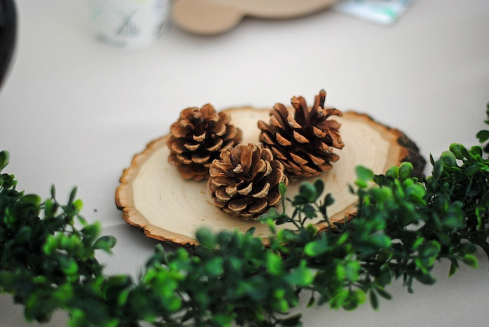 Pinecone Centerpiece from a Woodland Teddy Bear Camping Party on Kara's Party Ideas | KarasPartyIdeas.com (20)