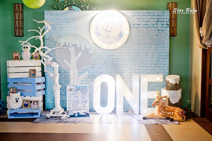 Arctic Highlight Backdrop from an Arctic Animal Birthday Party on Kara's Party Ideas | KarasPartyIdeas.com (7)