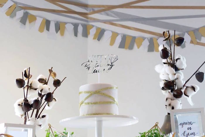 """Cotton Cakescape from an Elegant """"You're a Gem"""" Birthday Party on Kara's Party Ideas 