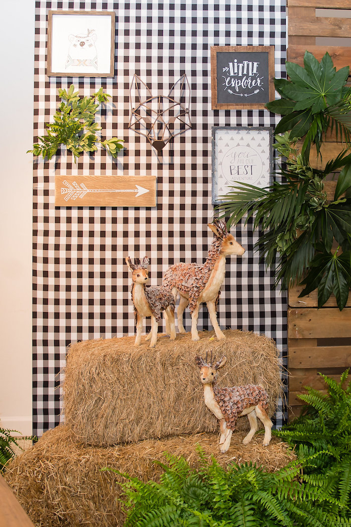Camping Themed Party Backdrop from a Modern Rustic Camping Birthday Party on Kara's Party Ideas | KarasPartyIdeas.com (38)