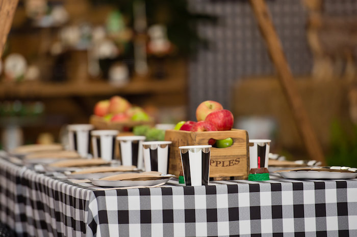 Monochromatic Checkered Guest Table from a Modern Rustic Camping Birthday Party on Kara's Party Ideas | KarasPartyIdeas.com (32)