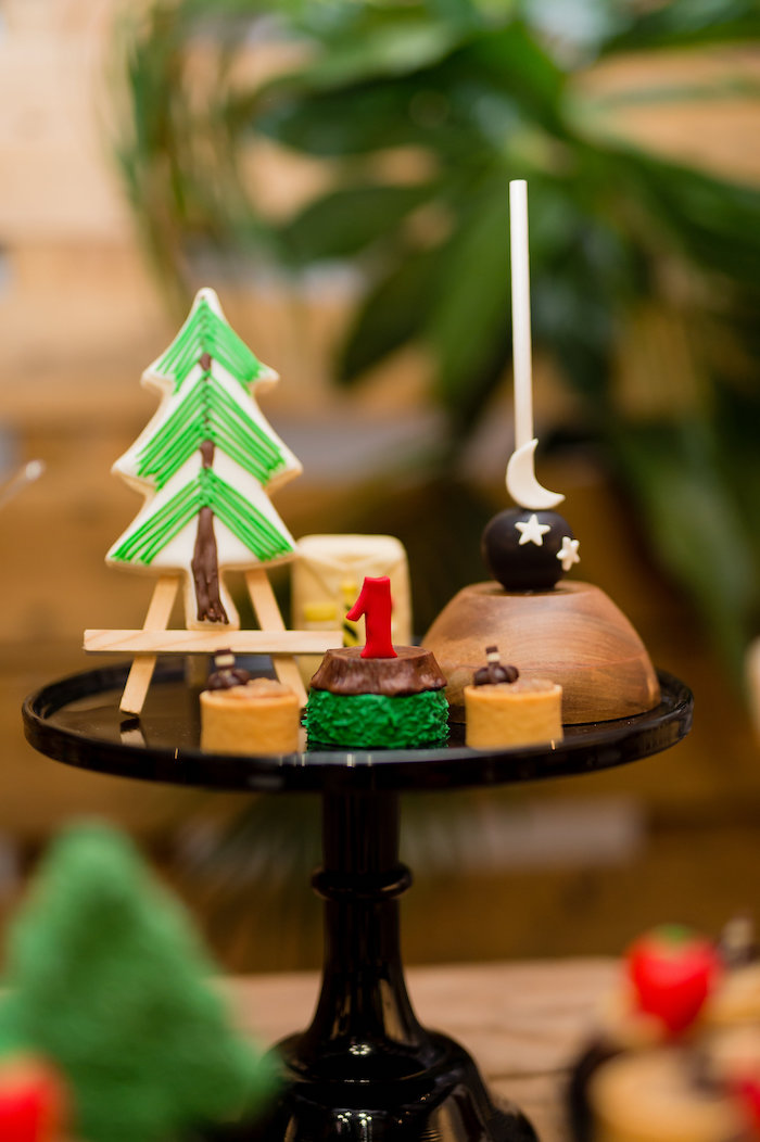 Camping Christmas In July Ideas.Kara S Party Ideas Modern Rustic Camping Birthday Party
