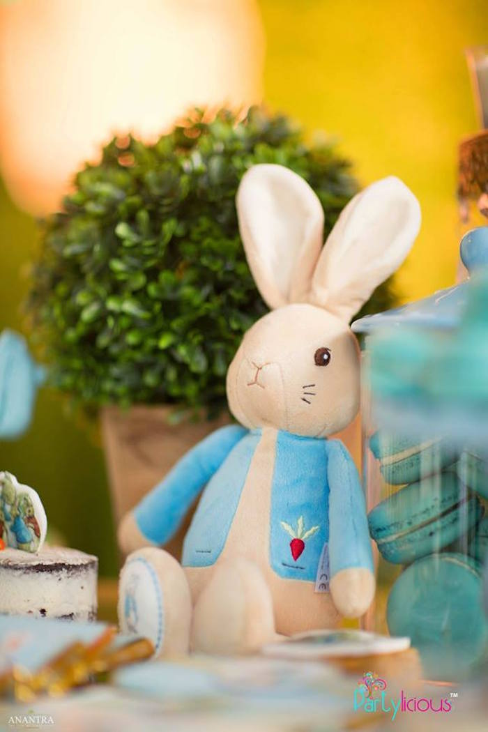 Peter Rabbit Plush from a Peter Rabbit Birthday Party on Kara's Party Ideas | KarasPartyIdeas.com (21)