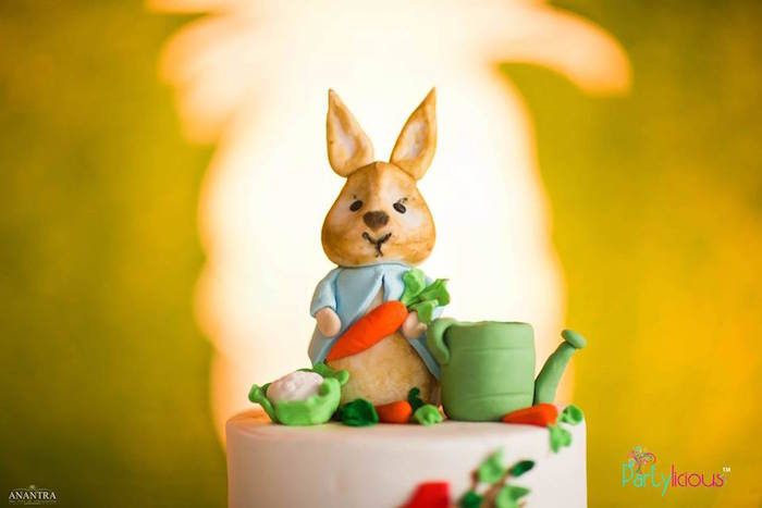 Peter Rabbit Cake Topper from a Peter Rabbit Birthday Party on Kara's Party Ideas | KarasPartyIdeas.com (31)