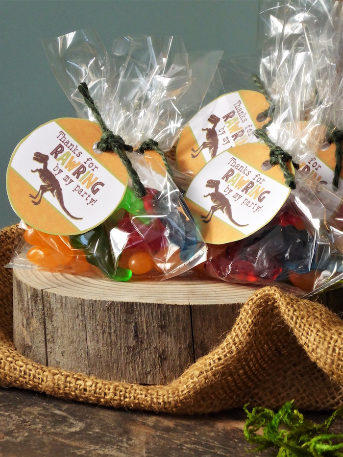Dinosaur Party Favors from a Rustic Dinosaur Birthday Party on Kara's Party Ideas | KarasPartyIdeas.com
