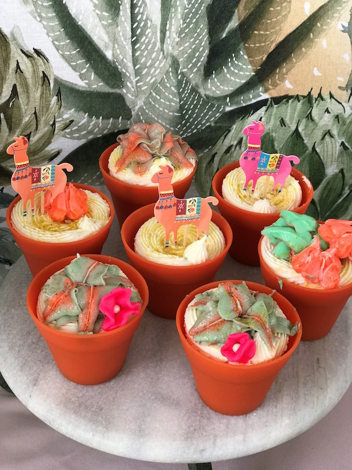 Terra Cotta Cupcakes from a Llama Fiesta Birthday Party on Kara's Party Ideas | KarasPartyIdeas.com (24)