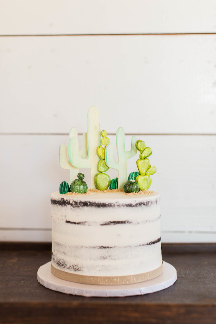 Semi-naked Cactus Cake from a Southwestern Cactus Baby Shower on Kara's Party Ideas | KarasPartyIdeas.com (28)