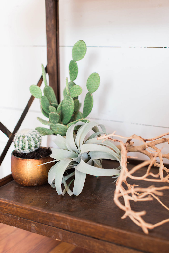Cacti Decor Pieces from a Southwestern Cactus Baby Shower on Kara's Party Ideas | KarasPartyIdeas.com (27)