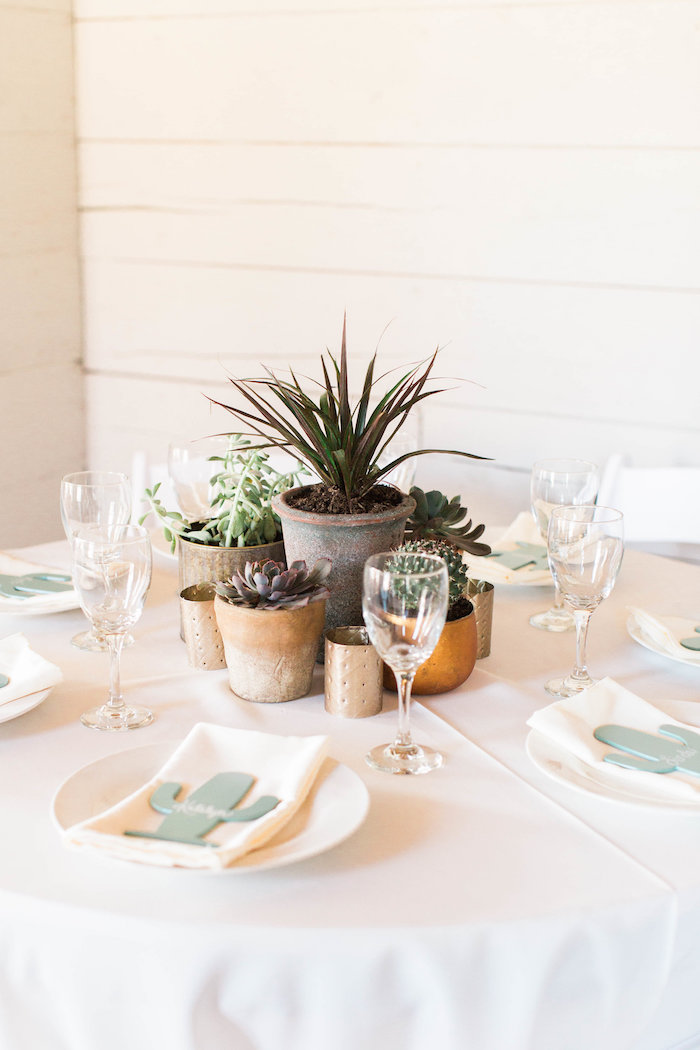 Cactus Themed Guest Table from a Southwestern Cactus Baby Shower on Kara's Party Ideas | KarasPartyIdeas.com (37)