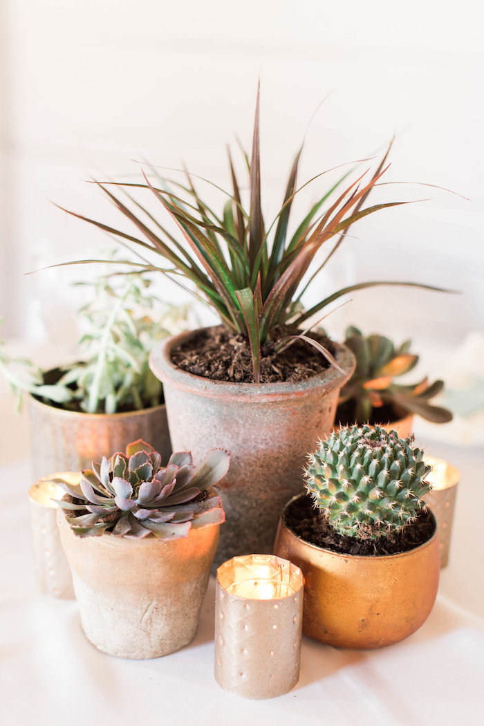 Cacti-inspired Table Centerpiece from a Southwestern Cactus Baby Shower on Kara's Party Ideas | KarasPartyIdeas.com (36)