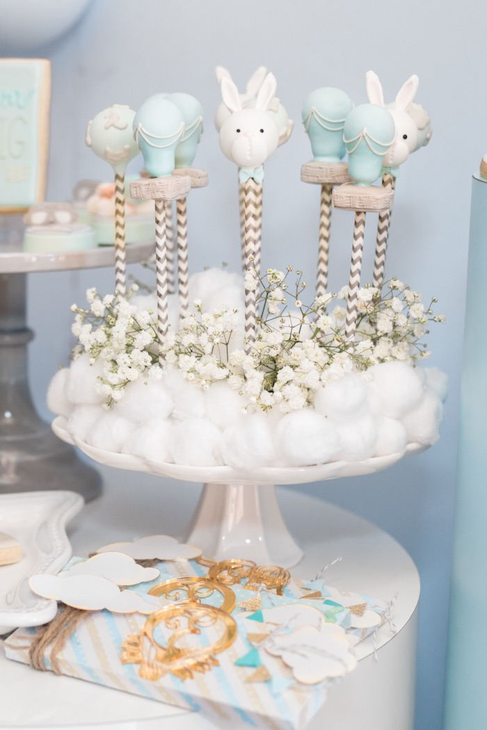 Cake Pops from a Woodland Animal Hot Air Balloon Birthday Party on Kara's Party Ideas | KarasPartyIdeas.com (25)