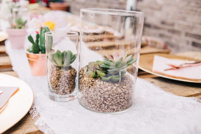 Succulent Plant Centerpieces from a Boho Sweet Sixteen Birthday Party on Kara's Party Ideas | KarasPartyIdeas.com (13)