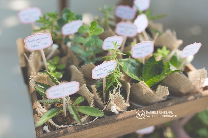 Plant Favors from a Butterfly Garden Birthday Party on Kara's Party Ideas | KarasPartyIdeas.com (15)